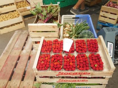 Les fraises de Monia